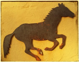 Horse on wall