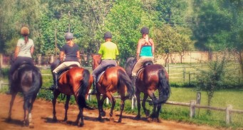 cropped-sunday-riding-lessons.jpg